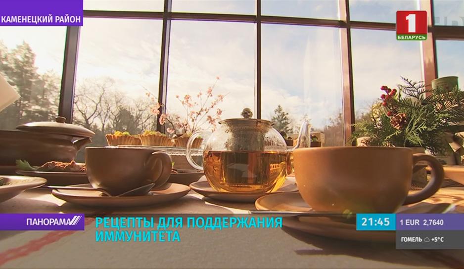 Чай из клюквы, зверобоя и веток малины - в Беловежской пуще знают