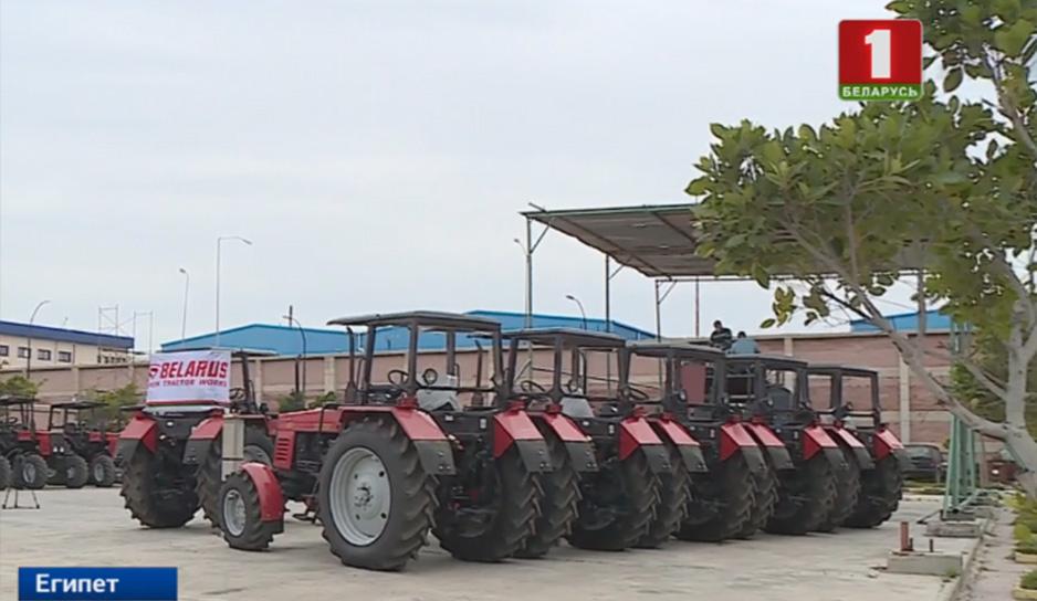 В Египте собирают наши тракторы