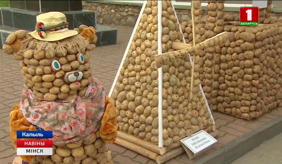 Фестиваль картофеля организовали в Копыле