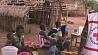 В Африку готовы направить экспериментальную вакцину от лихорадки Эбола У Афрыку гатовыя накіраваць эксперыментальную вакцыну ад ліхаманкі Эбола