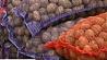 Общегородские ярмарки продолжают радовать жителей и гостей столицы Агульнагарадскія кірмашы працягваюць радаваць жыхароў і гасцей сталіцы