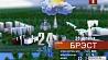Прогноз погоды на 28 июля  Прагноз надвор'я на 28 ліпеня