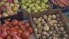 Мингорисполком  сохранит фруктово-овощные палатки на улицах белорусской столицы Мінгарвыканкам захавае фруктова-гароднінныя палаткі на вуліцах беларускай сталіцы