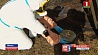Специальное подразделение по работе с источниками ионизирующего излучения сформировано в  Беларуси Спецыяльнае падраздзяленне па працы з крыніцамі іанізуючага выпраменьвання сфарміравана ў Беларусі