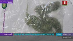 Контрабанда наркотиков пресечена на белорусско-украинской границе Кантрабанда наркотыкаў спынена на беларуска-ўкраінскай мяжы