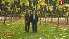А.Лукашенко: Беларусь готова принять активное участие в плане индустриализации Таджикистана А.Лукашэнка: Беларусь гатова прыняць актыўны ўдзел у плане індустрыялізацыі Таджыкістана