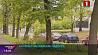 В столице и Минской области завтра ожидается порывистый ветер и кратковременный дождь  У сталіцы і Мінскай вобласці заўтра чакаецца парывісты вецер і кароткачасовы дождж