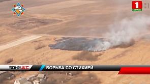 Белорусские спасатели продолжают борьбу с пожарами в экосистемах