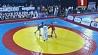 Дворец спорта принимает чемпионат Европы по самбо  Палац спорту прымае чэмпіянат Еўропы па самба  Minsk Sports Palace hosts 2017 European Sambo Championship