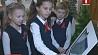 Обучать правилам безопасности детей можно и с помощью современных технологий Навучаць правілам бяспекі дзяцей можна і з дапамогай сучасных тэхналогій