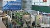"""Концерн """"Беллегпром"""" приглашает индивидуальных предпринимателей за круглый стол Канцэрн """"Беллёгпрам"""" запрашае індывідуальных прадпрымальнікаў за круглы стол"""