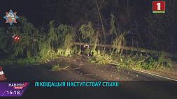 В центральном регионе Беларуси зафиксировано 24 случая падения деревьев Складаныя ўмовы надвор'я захоўваюцца ў сталіцы і Мінскай вобласці