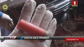 У жителя Слуцкого района нашли мясо лося и несколько незарегистрированных ружей