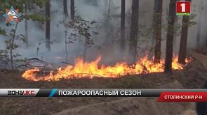Около 200 гектаров территории охвачено огнем в Столинском районе