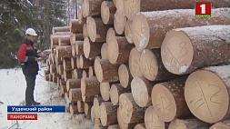 Одной из ключевых отраслей реального сектора экономики Беларуси является лесное хозяйство Адной з ключавых галін рэальнага сектара эканомікі Беларусі з'яўляецца лясная гаспадарка