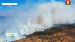 В Брестской области ввели четвертый - предпоследний - класс пожароопасности