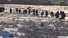 Начата расшифровка черных ящиков разбившегося Ан-148 в Подмосковье Пачата расшыфроўка чорных скрынь Ан-148, які разбіўся ў Падмаскоўі
