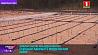 Экологическую очистительную станцию открыли в Мядельском районе Экалагічную ачышчальную станцыю адкрылі ў Мядзельскім раёне