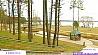 Экологический отдых возле самого большого озера Беларуси Экалагічны адпачынак ля самага вялікага возера Беларусі