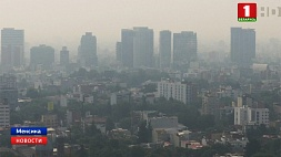 В Мексике из-за лесных пожаров чрезвычайная экологическая тревога У Мексіцы з-за лясных пажараў  надзвычайная экалагічная трывога
