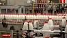 Беларусь и Россия договорились о поставках молока Беларусь і Расія дамовіліся аб пастаўках малака Belarus and Russia  agree on  supply of milk