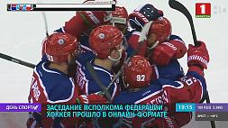 Заседание исполкома Федерации хоккея прошло в онлайн-формате