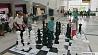 Cтоличный Дворец детей и молодежи предлагает занятия на новый учебный сезон Cталічны Палац дзяцей і моладзі прапануе заняткі на новы навучальны сезон