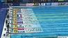 Чемпионат мира по водным видам спорта в Венгрии приносит нашей сборной вторую бронзовую  медаль Чэмпіянат свету па водных відах спорту ў Венгрыі прыносіць нашай зборнай другі бронзавы  медаль