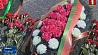 Полсотни делегатов БРСМ возложили цветы к монументу Победы Паўсотні дэлегатаў БРСМ усклалі кветкі да манумента Перамогі