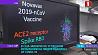 В США заявили об успешном испытании на людях вакцины от COVID-19