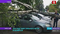Последствия сильного ветра в Беларуси Наступствы моцнага ветру ў Беларусі