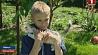 В Беларуси отметили Международный день защиты детей У Беларусі адзначылі Міжнародны дзень абароны дзяцей