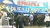 Сегодня в центре столицы - ярмарка Рыба Беларуси - 2013 Сёння ў цэнтры сталіцы - кірмаш Рыба Беларусі - 2013