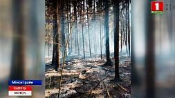 Около деревни Валерьяново горел лес Паблізу вёскі Валяр'янава гарэў лес