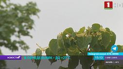 Завтра в Беларуси будет до +27°С У панядзелак  да +27°С