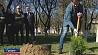 Иван Эйсмонт принял участие в посадке деревьев в Гродно на территории областной телерадиокомпании Іван Эйсмант прыняў удзел у пасадцы дрэў у Гродне на тэрыторыі абласной тэлерадыёкампаніі