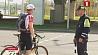 Владельцы велосипедов на усиленном контроле ГАИ Уладальнікі веласіпедаў на ўзмоцненым кантролі ДАІ