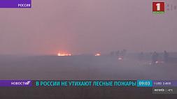 В России не утихают лесные пожары У Расіі не сціхаюць лясныя пажары