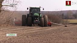 Теплое начало марта позволило аграриям Брестской области приступить к посевной Цёплы пачатак сакавіка дазволіў аграрыям Брэсцкай вобласці распачаць пасяўную