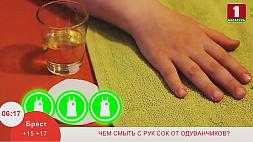 Чем отмыть сок одуванчика с рук
