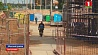 Госстройнадзор усилил контроль за порядком на стройплощадках Дзяржбуднагляд узмацніў кантроль за парадкам на будпляцоўках