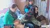 В Ветковском районе существует приют для особенных животных  У Веткаўскім раёне ёсць прытулак для асаблівых жывёл