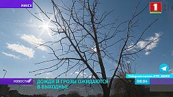 Оранжевый уровень опасности объявлен сегодня в Беларуси