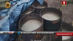 Самогонщика из Вороновского района задержали с поличным в пограничной полосе
