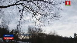 В Беларуси на сегодня объявлен оранжевый уровень опасности из-за сильного ветра У Беларусі на сёння абвешчаны аранжавы ўзровень небяспекі з-за моцнага ветру