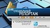 """Специальный репортаж """"Соколиная охота"""" на """"Беларусь 1"""""""