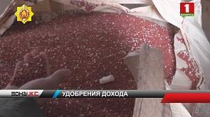 Хищение минеральных удобрений с сельхозпредприятий Гомельской области