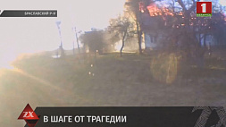 Последствия пожара в Браславском районе