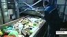 Новые заводы по переработке вторичного сырья появятся в Минске Новыя заводы па перапрацоўцы другаснай сыравіны з'явяцца ў Мінску
