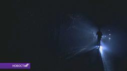 Ночь волков прошла в Беловежской пуще   Ноч ваўкоў прайшла ў Белавежскай пушчы